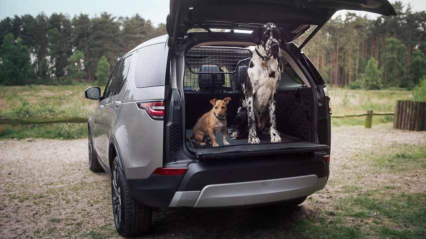 Land Rover ra mắt gói phụ kiện dành riêng cho thú cưng 3
