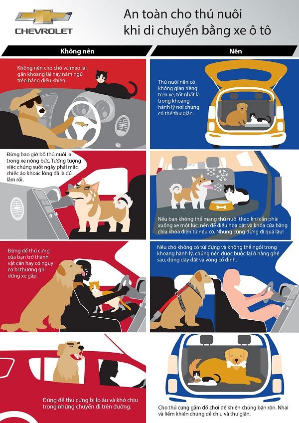 Những điểm lưu ý khi đưa thú cưng đi dã ngoại cùng