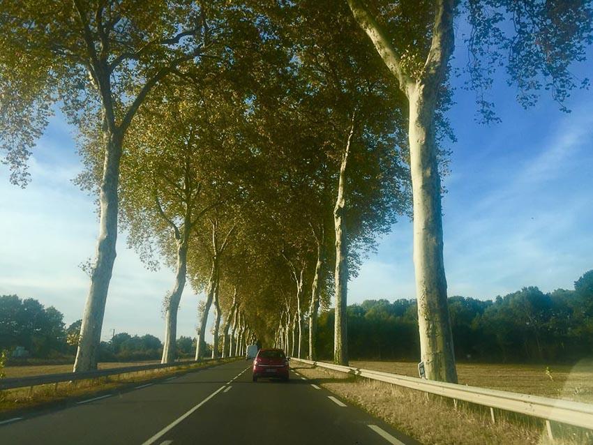 Du lịch châu Âu bằng xe thuê và xe tự lái 2