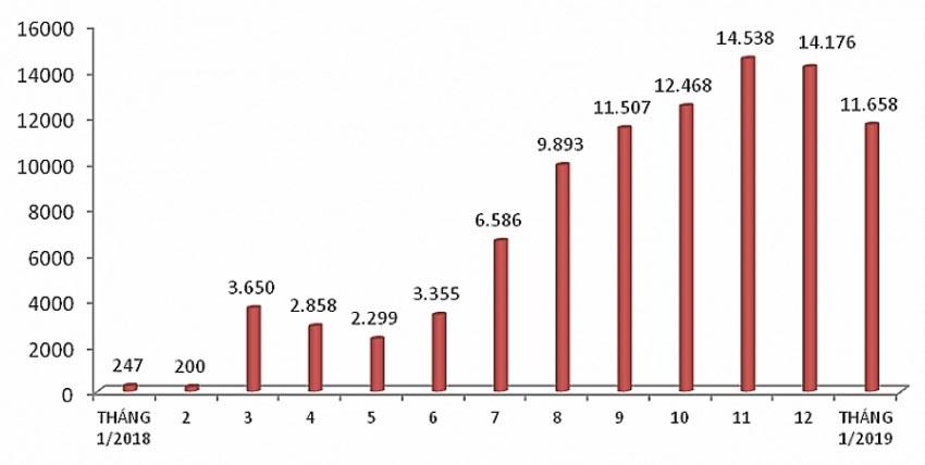 Lượng ô tô nhập khẩu trong năm 2018 và tháng 1-2019 (Biểu đồ: baohaiquan.vn)