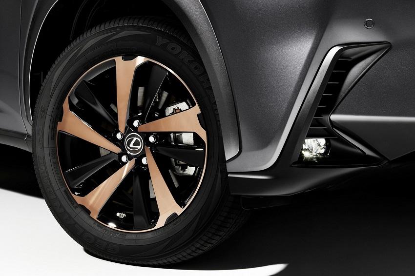 Lexus NX 300 2020 phiên bản Black Line Special Edition nổi bật với các điểm nhấn bằng đồng - 3
