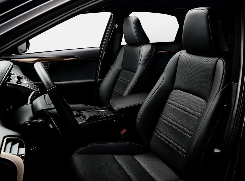 Lexus NX 300 2020 phiên bản Black Line Special Edition nổi bật với các điểm nhấn bằng đồng - 5