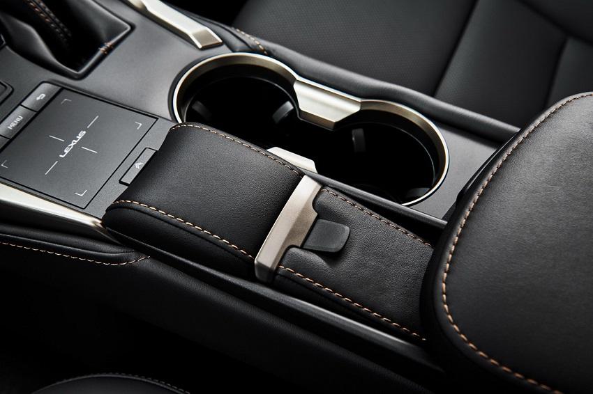 Lexus NX 300 2020 phiên bản Black Line Special Edition nổi bật với các điểm nhấn bằng đồng - 6