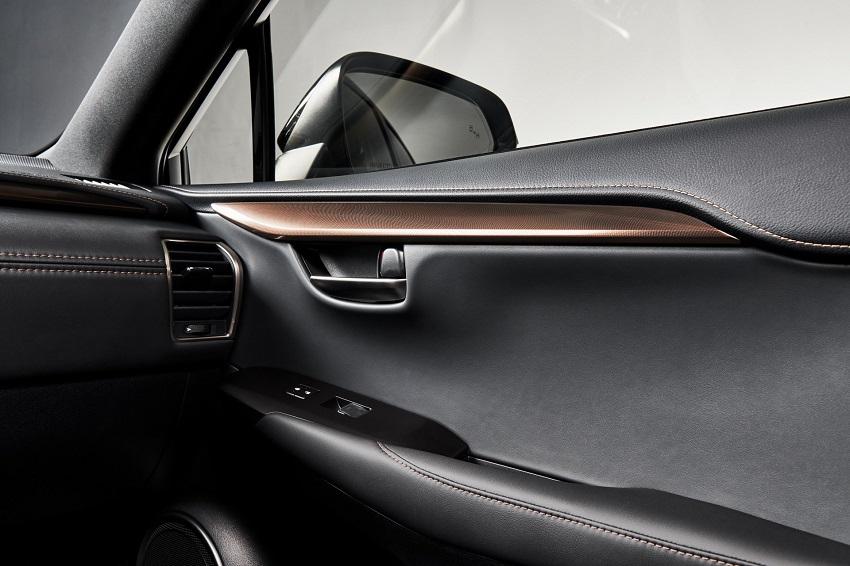 Lexus NX 300 2020 phiên bản Black Line Special Edition nổi bật với các điểm nhấn bằng đồng - 7