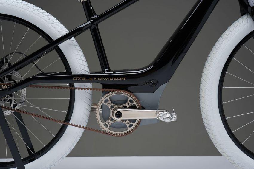 Xe đạp điện Serial 1